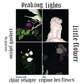 Play & Download Little Flower by Peaking Lights | Napster