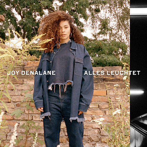 Alles leuchtet (Single Version) by Joy Denalane