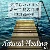 Play & Download Natural Healing - 気持ちいい ヨガ ポーズ 鳥の詩 集中力 高める by Various Artists | Napster
