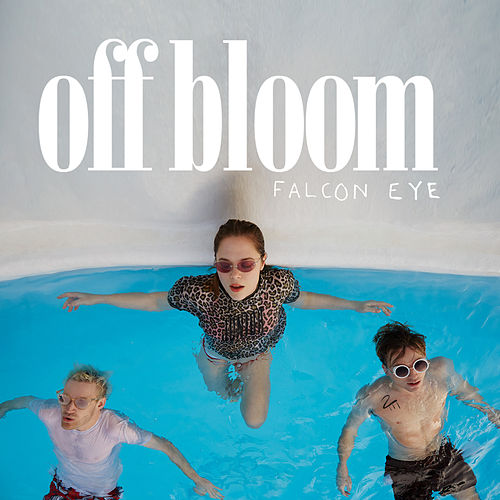 Falcon Eye by Off Bloom