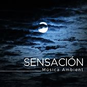Play & Download Sensación: Musica Ambient by Various Artists | Napster