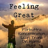 Feeling Great - Förbättra Koncentration Lugn Träna Din Hjärna Musik med Instrumental New Age Meditativ Ljud by Soothing Music Ensamble