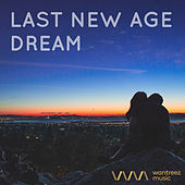 Last New Age Dream by Various Artists
