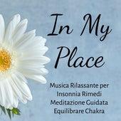 Play & Download In My Place - Musica Rilassante per Insonnia Rimedi Meditazione Guidata Equilibrare Chakra con Suoni Zen New Age Strumentali by Zen Music Garden | Napster