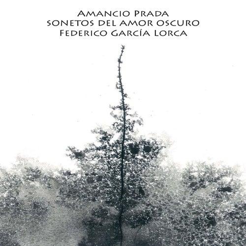 Sonetos del Amor Oscuro de Federico García Lorca by Amancio Prada