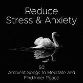 Reduce Stress & Anxiety - 50 Ambient Songs to Meditate and Find Inner Peace by Various Artists