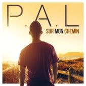 Sur mon chemin by P.A.L.