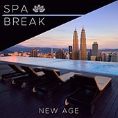 Spa Break - Enchanting New Age Music with Nature Sounds and some Calm, Soothing and Modern Relaxing Music by Various Artists