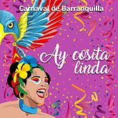 Carnaval de Barranquilla: Ay Cosita Linda by Various Artists