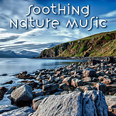 Soothing Nature Music – Calm Sounds of Nature, New Age Sounds, Peaceful Music, Mind Control by Calm Ocean Sounds