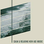 Play & Download Calm & Relaxing New Age Music – Soft Sounds to Relax, Rest a Bit, Calm Your Mind by Relaxing | Napster