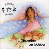 Diciembre en México by Donna Peña
