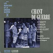 Les musiciens et la Grande Guerre, Vol. 11: Chant de guerre by Various Artists