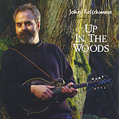 Play & Download Up in the Woods by John Reischman | Napster