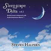 Sleepscape Delta by Various Artists