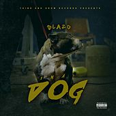 Play & Download Ima Dog by Blazo | Napster