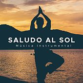 Play & Download Saludo al Sol: Musica Instrumental Tranquila para la Relajacion Profunda by Various Artists | Napster