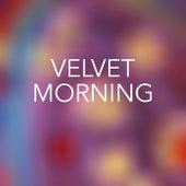 Velvet Morning de Various Artists