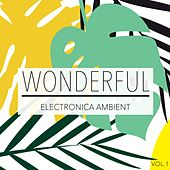 Wonderful Ambient Electronica, Vol. 1 by Various Artists