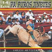 14 Exitos Pa Puros Jinetes by Various Artists