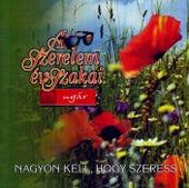A szerelem évszakai: Nyár - Nagyon kell, hogy szeress by Various Artists