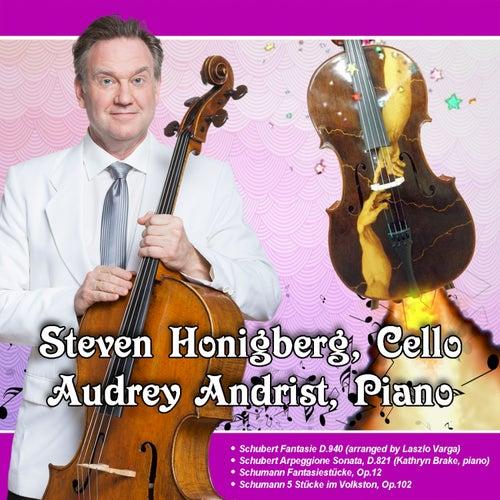 Honigberg plays Schubert and Schumann by Steven Honigberg