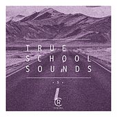 True School Sounds, Vol. 5 by Various Artists