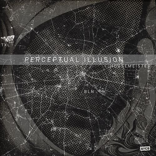 Perceptual Illusion by Housemeister