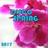 Disco Spring 2017 de Various Artists