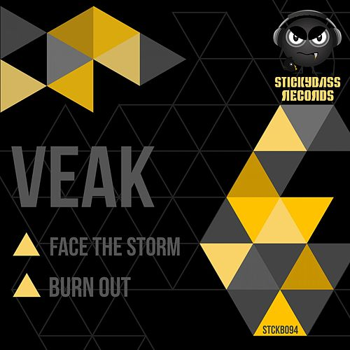 Face the Storm / Burn Out by Veak