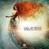 Lost Gravity by Liquid Soul