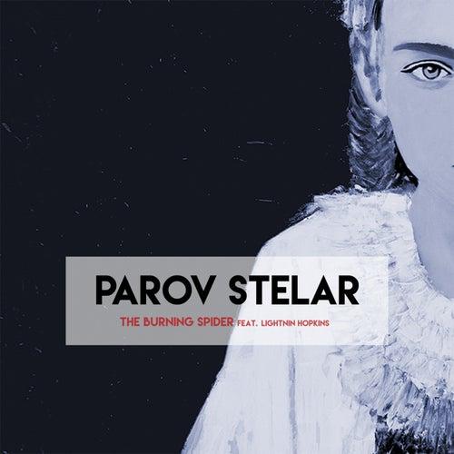 The Burning Spider de Parov Stelar