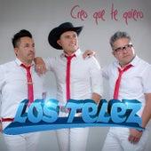 Creo Que Te Quiero by Los Telez