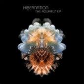 The Aquarius EP by Hibernation