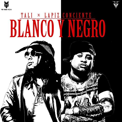 Blanco y Negro de Lapiz Conciente