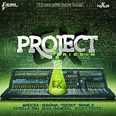 Project Ex Riddim by Various Artists