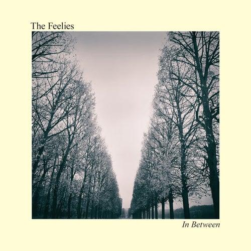 In Between by The Feelies
