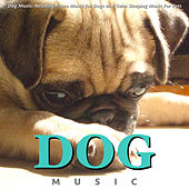 Play & Download Dog Music: Relaxing Piano Music for Dogs and Calm Sleeping Music for Pets by Dog Music (1) | Napster