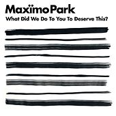 What Did We Do to You to Deserve This? by Maximo Park
