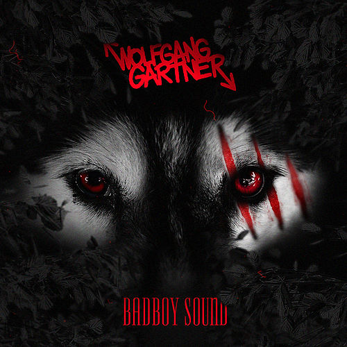 Badboy Sound by Wolfgang Gartner