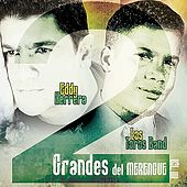 Play & Download 2 Grandes del Merengue Vol. 4 by Various Artists | Napster