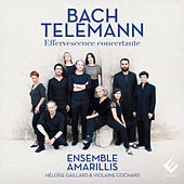 Play & Download Bach & Telemann: Effervescence concertante by Ensemble Amarillis | Napster