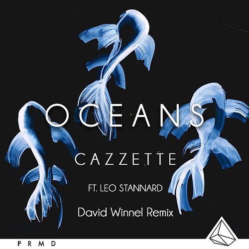 Oceans (feat. Leo Stannard) (Dave Winnel Remix) by Cazzette