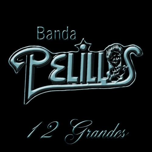 Play & Download 12 Grandes by Banda Pelillos | Napster