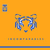 Incomparables by Various Artists
