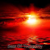 Play & Download Seas Of Tranquility by Meditation Music Zone | Napster