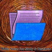 Play & Download White Noise For Study & Research by Study Concentration White Noise Research | Napster