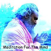 Play & Download Meditation For The Mind by Meditation Music Zone | Napster