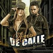 Amor De Calle by Malafe