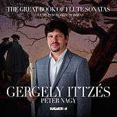 Play & Download The Great Book of Flute Sonatas, Vol. 2 by Gergely Ittzés | Napster
